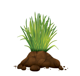 Building-soil-health-icon